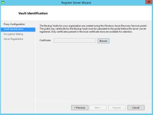 RegisterServerVaultIdentification